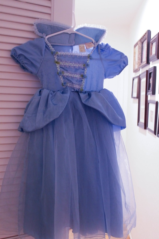 Cinderella dress  1 of 1