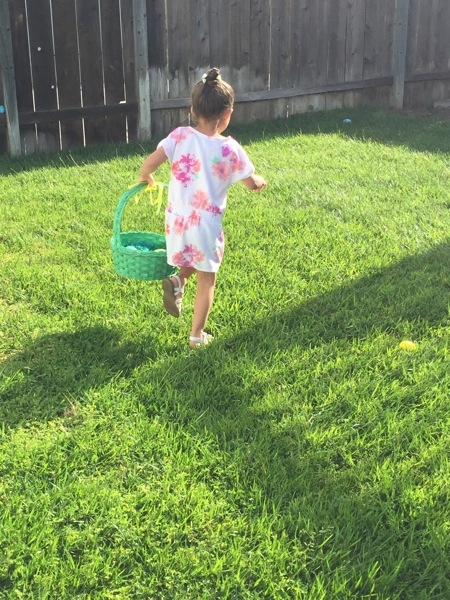 Hunting for eggs