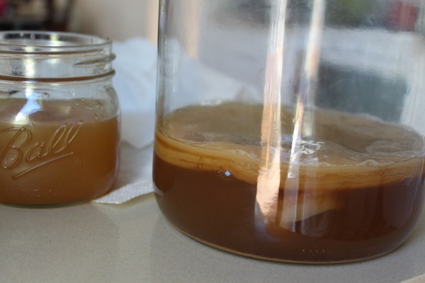 Scoby  1 of 1 2