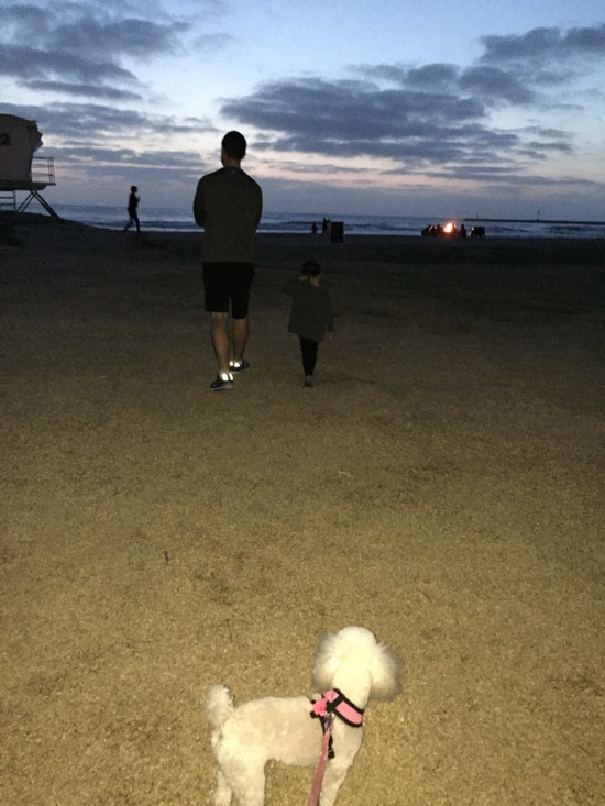 Beach walks