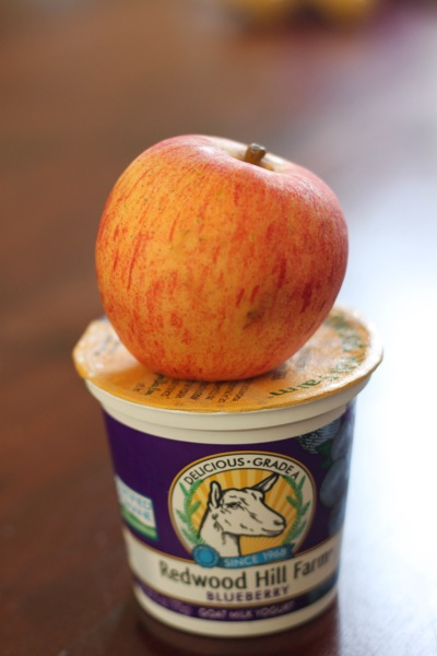apple and yogurt