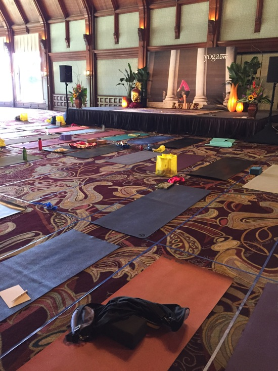 Yoga journal sd 2
