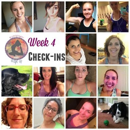 Ssu2015 week 4 checkins