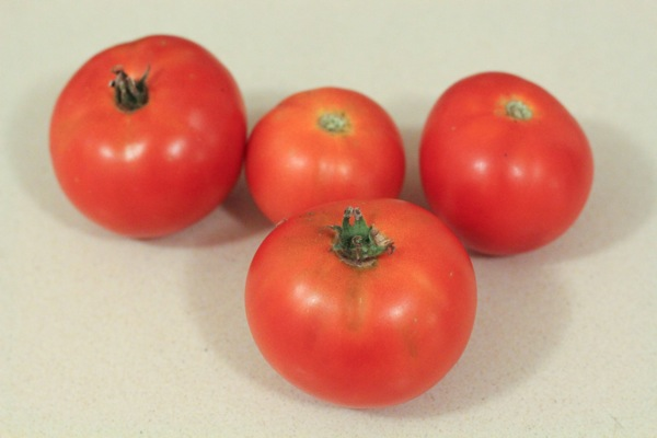Tomatoes  1 of 1
