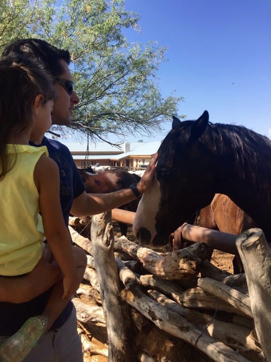 Tom and liv w the horse