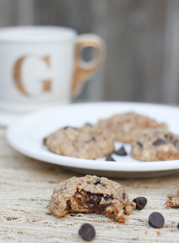 Healthy oatmeal peanut butter chocolate chip cookies close up