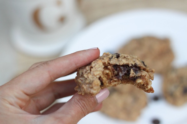 Healthy oatmeal peanut butter chocolate chip cookie close up