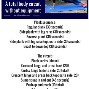 Planksgiving workout! Take this with you for holiday travel. No equipment needed, and you'll get a bonus plank scorcher in between strength exercises. www.fitnessista.com