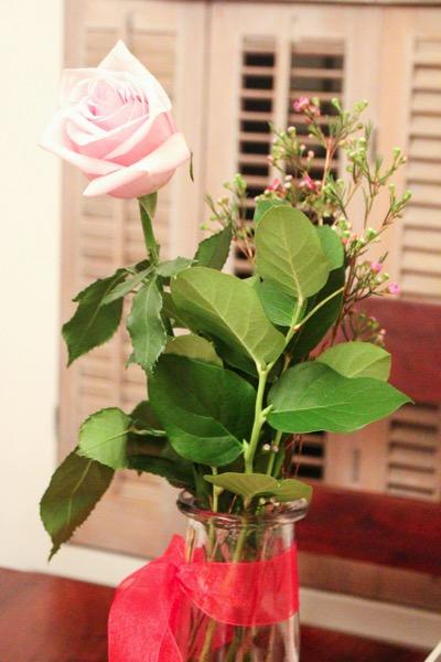 Livis rose