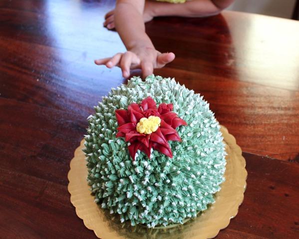 Cactus cake 3