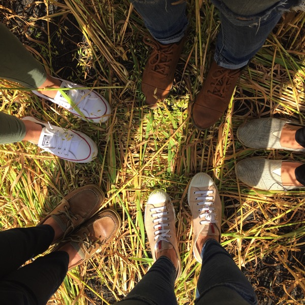 Many feet in the grass