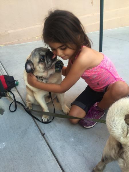 Pug kiss