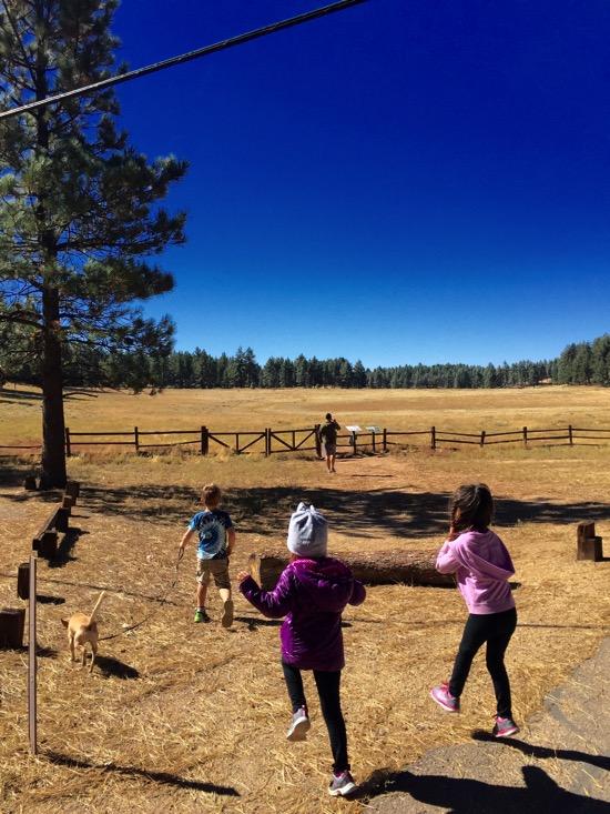 kids playing while camping