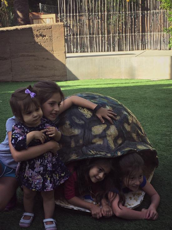 Zoo w the cousins