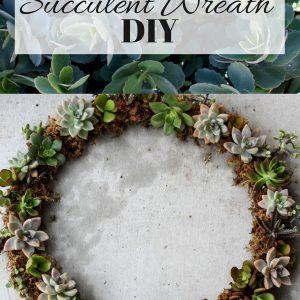 Make a living succulent wreath at home! This is a beautiful, homemade, inexpensive gift or bit of home decor. fitnessista.com