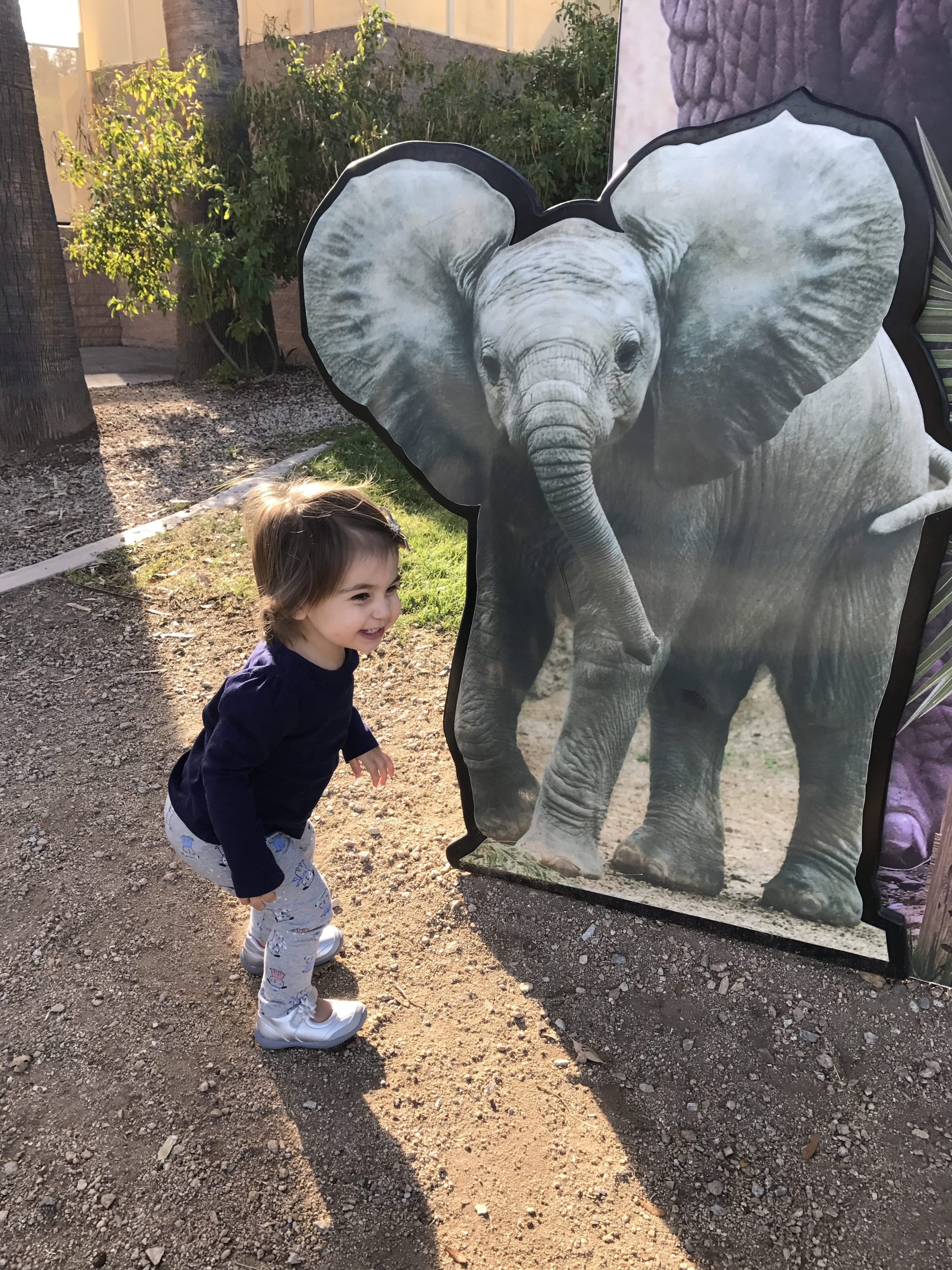 P and a pretend elephant