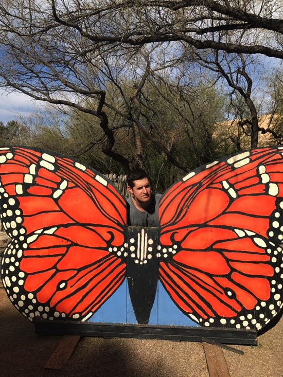 Tom as a butterfly