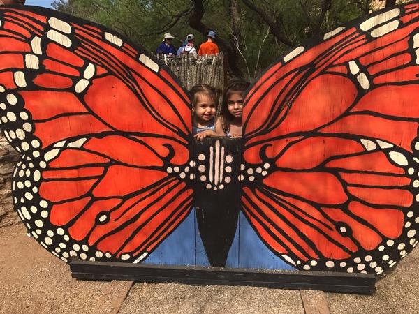 2 headed butterfly