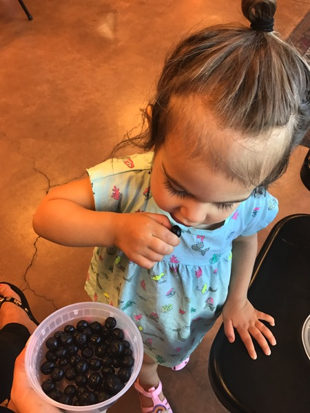 Blueberries with p