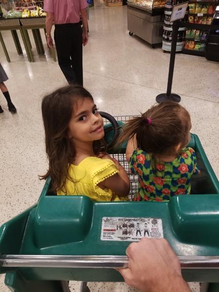 Shopping at Publix