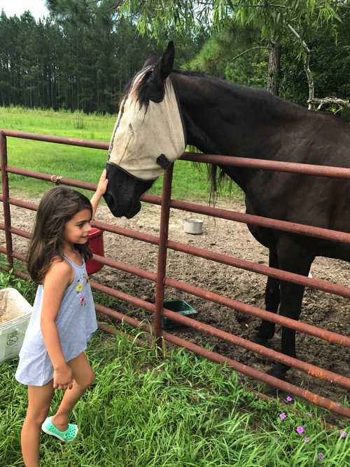 Liv petting the horse