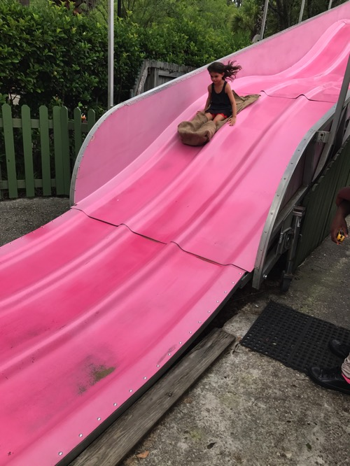 Livi on a huge pink slide