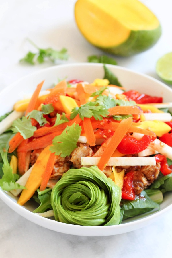 Spring roll chicken salad