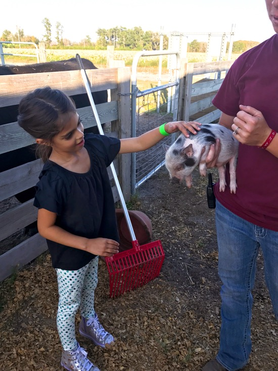 Liv petting pickles the pig