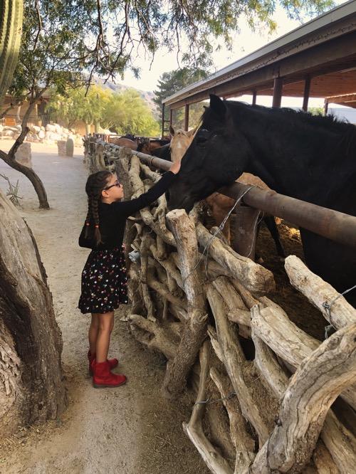 Livi w the horse