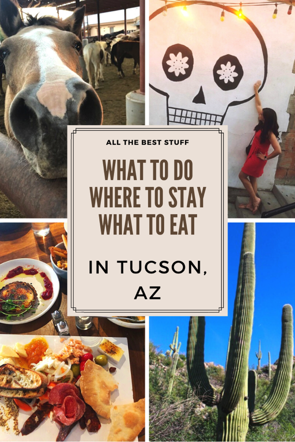 Tucson restaurant ideas, where to stay, and things to do! fitnessista.com