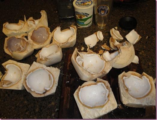 cut up coconuts