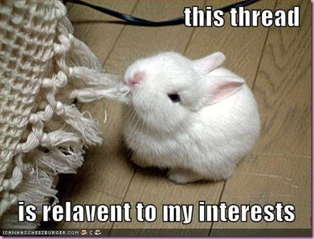 funny-pictures-rabbit-eats-thread