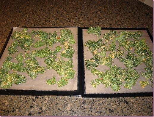 kale chips (2)