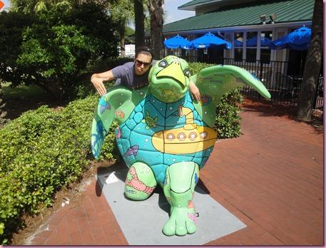 gangsta turtle