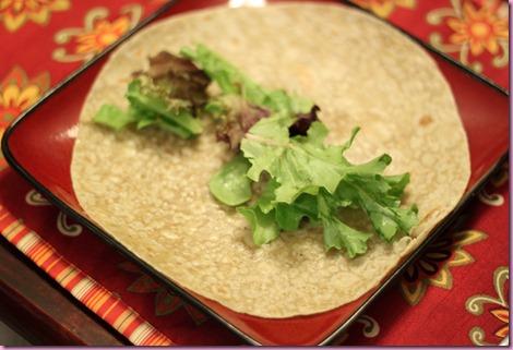 burrito (3)