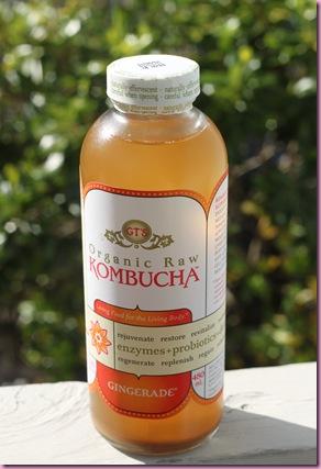 kombucha (2)